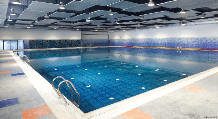 南阳师院立体国标标准游泳池设备案例