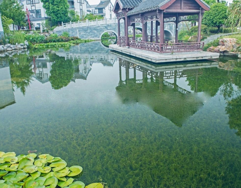 导致景观水污染的六大原因