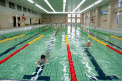 游泳池设计方案中标开封
