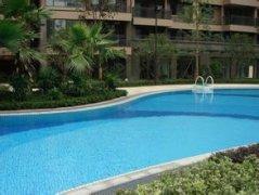 游泳池设备厂家中标郑州
